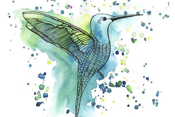 Hummingbird Aqua RP55